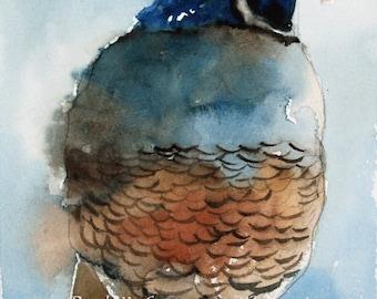 California Quail PRINT Quail art print Quail painting quail  california Quail small bird painting in blue and brown