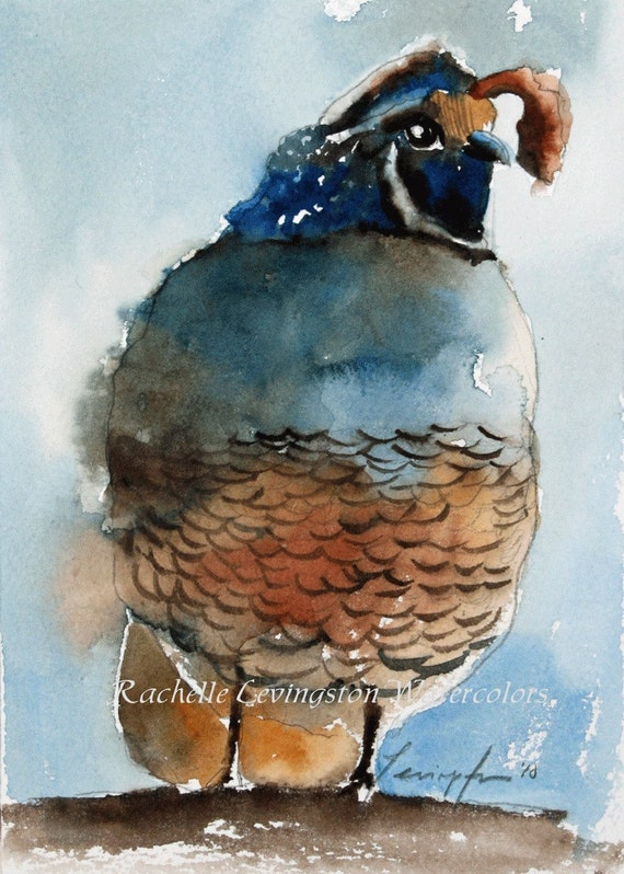 California Quail PRINT Quail art print Quail painting quail 5 x7 (california Quail / small bird painting in blue and brown