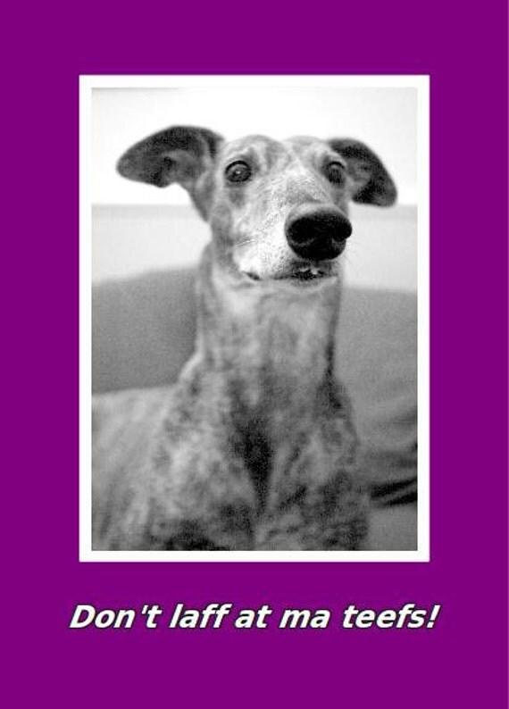 Greyhound buck teeth card - Don't laff at ma teefs - HALF PRICE
