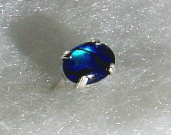 Blue Paua Shell Tie Tack