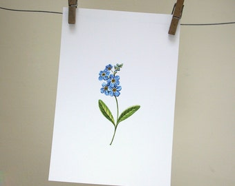 Forget Me Not Original Art Print
