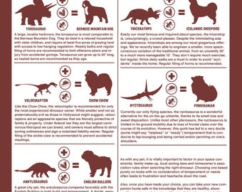 How to Choose a Pet Dinosaur Art Print -- 11x17