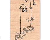STAMP SET OF 2 - Linnea Flower and Words - Wood Mounted Rubber Stamp (mcrs 01-20 & 10-24)