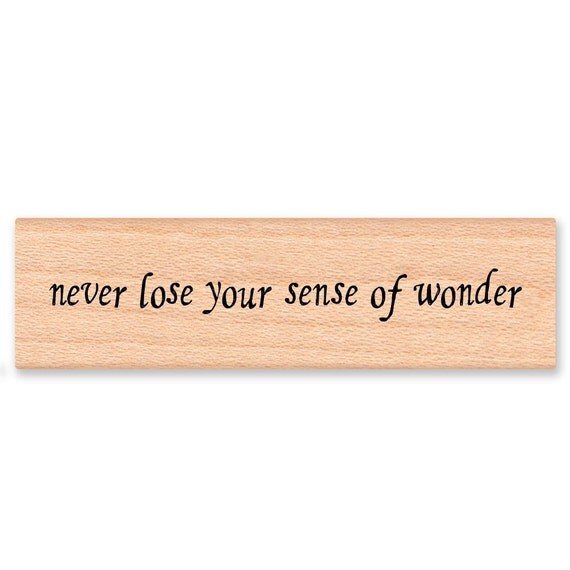 NEVER LOSE Your Sense of Wonder Rubber Stamp~Journaling and Diary Stamp~Nature Beauty Stamp~Hiking~Camping~Wood Mounted Rubber Stamp (07-09)