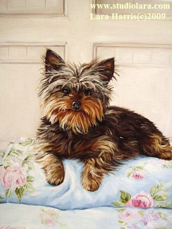 11x14 Yorkie Dog Yorkshire Terrier Fine Art Giclee Print by LARA Matthew Mead's Oscar