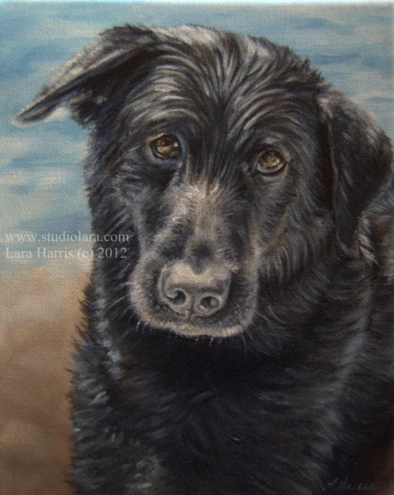 8x10 Labrador Retriever Black Lab Fine Art Giclee Print by LARA