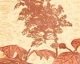 Fall Hydrangea, Hand Pulled, Linoleum Reduction Print