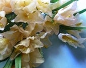 Silk Millinery Flowers Freesia in Golden Blush for Bridal, Boutonnieres, Hats, Corsages, Bouquets MF 245