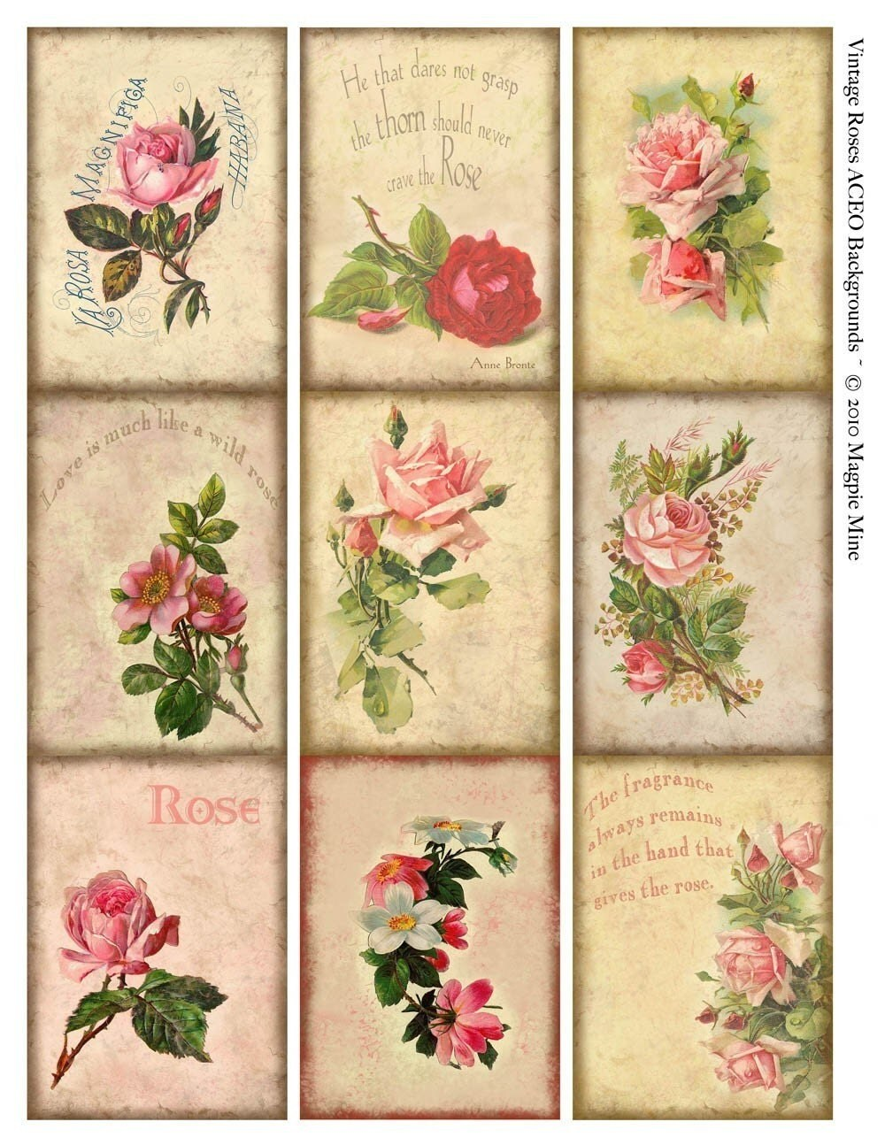 rose wallpaper cards instant - photo #15