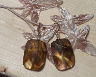 Autumn Quartz Earrings - Lovely Hues of Brown