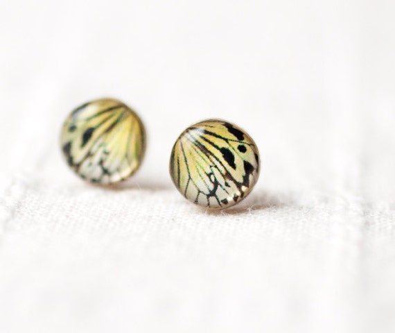 Butterfly earrings - Butterfly wing earring studs  - Butterfly jewelry - Everyday earrings - Mustard tiny earrings - Ear posts (E093)