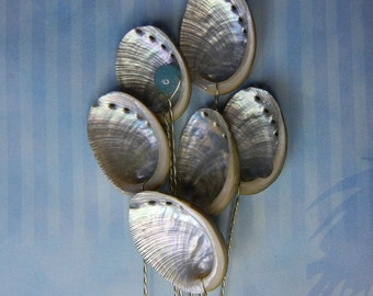 Six Baby Abalone Seashell Stems - Seashells for Wedding Bouquet Bridal Bouquet or Centerpieces