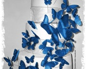 Royal Blue 3D Butterflies in Horizon Royal / Blue / Cornflower / or DB Color Butterfly Cake Topper Weddings Decoration 46x