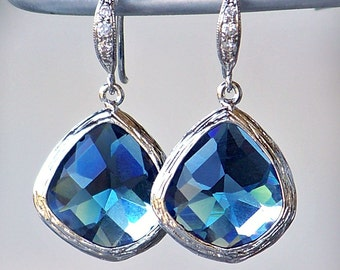Sapphire Blue Crystals Framed in Silver on Crystal Detailed French Earrings