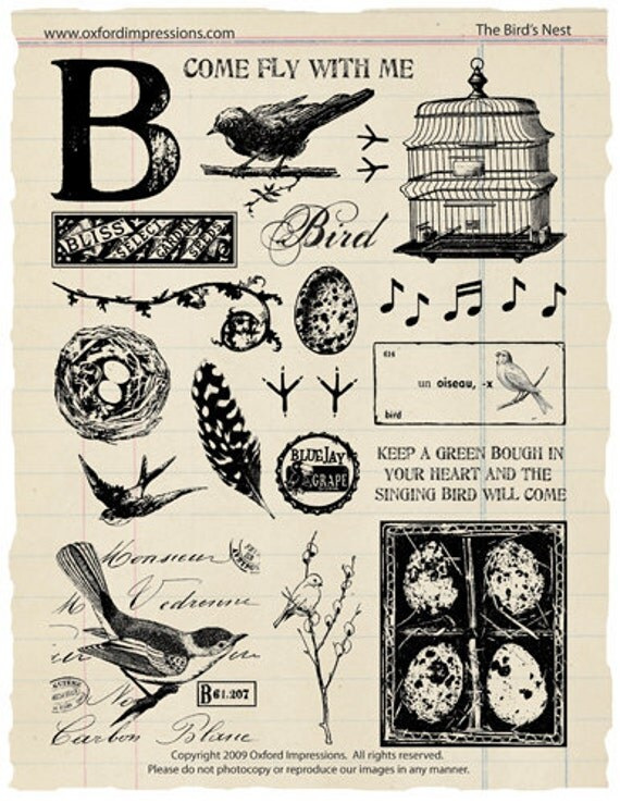 The Bird's Nest Rubber Stamp Collection