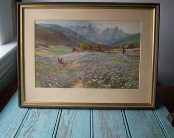 Vintage Alpine Meadows Framed Print