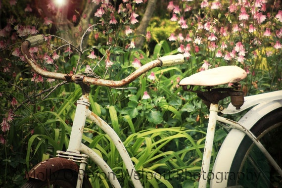 Shabby Chic Bicycle Art Photograph, Cottage Style Home Decor, Rustic Wall Art, Vintage Bike Print, Pink Green Bedroom Art, Teen Girls Room