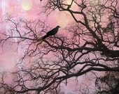 Surreal Nature Photography, Fairytale Raven Gothic Trees, Spooky Pink Nature, Haunting Fantasy Crows Tree, Fantasy Raven Crow Nature Prints