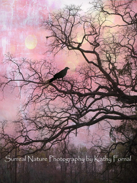 Surreal Nature Photography, Fairytale Raven Gothic Trees, Spooky Nature Print, Haunting Raven In Trees, Gothic Raven Crow Trees Nature Print