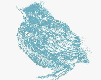 Baby Blue Robin -print | Free Shipping