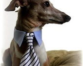 Dog Collar with Dog Bow Tie and Neck Tie - White and Blue Nautical Stripes