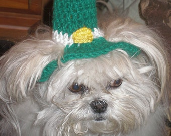 LEPRECHAUN TOP HAT - St Patricks Day dog hat - Humorous - 2 to 20 lb pets - made to order