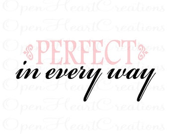 Nursery Wall Quote - Perfect in Every Way Baby Nursery Vinyl Wall Decal - Girl or Boy Wall Lettering Quote Saying Decor BA0216
