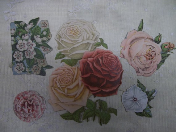 Large Pink and White Flowers - Lot of 5 Antique Die Cut Flowers  - 1800's