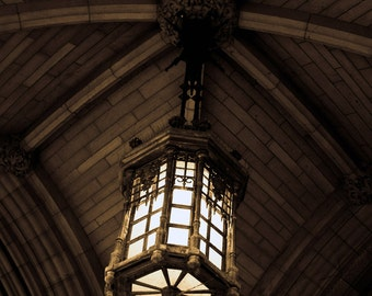 Photograph Neutral Sepia Gothic Hanging Pendant Light Lantern Chandelier in Historic Ottawa Parliament Building Art Print Home Decor