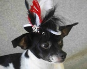 Pirate hat for dog or cat black color with white black and red feather