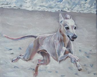 Italian Greyhound dog art print CANVAS print of LA Shepard painting 12x12