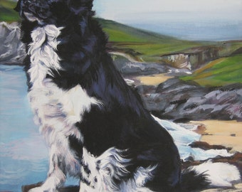 Stabyhoun art print CANVAS print of LA Shepard painting 8x10 dog art