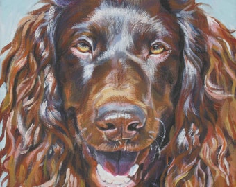 "BOYKIN SPANIEL dog portrait art canvas PRINT of LAShepard painting 12x12"""