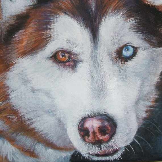 "Siberian Husky dog art CANVAS print of L.A.Shepard painting 8x8"" portrait"