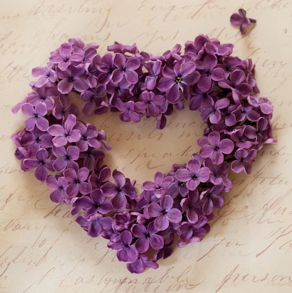purple love valentine day - photo #39
