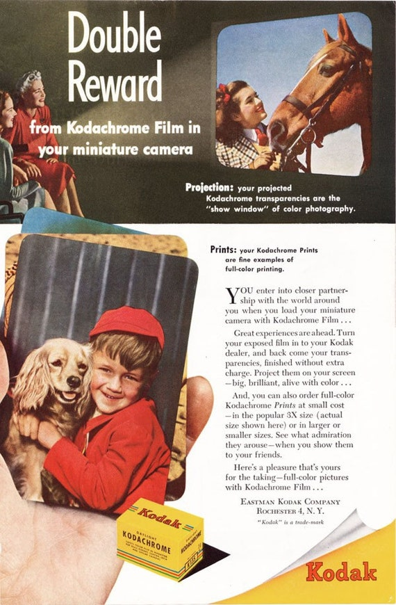 1948 ad Kodachrome Film Kodak Prints boy cocker spaniel color slide transparencies photographica - Free U.S. shipping