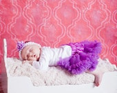 Newborn Photography Backdrop, Photo Backdrop, Photo Background, Photography Background,