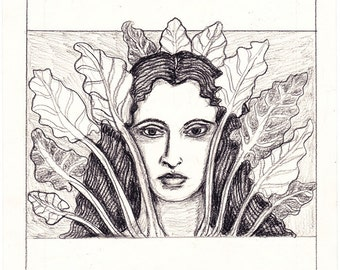 Sketch for Lady of the Rainbow Chard small original pencil drawing fine art study for seed packet Unique Gift for Gardener -Free US shipping