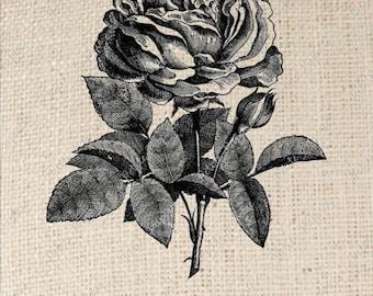 Digital Download for Iron on Transfer Rose Flower B