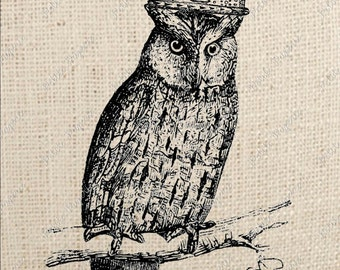 Owl with Crown Digital Download Iron on Transfer