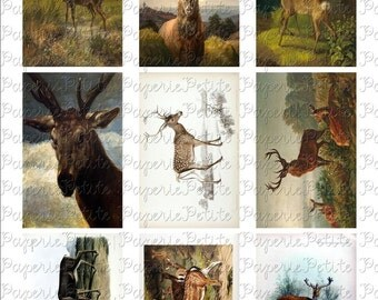 Deer Digital Download Collage Sheet 3.5 x 2.25 Inch