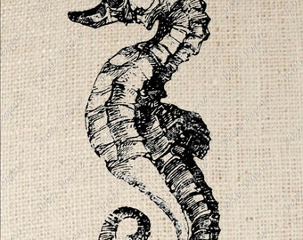 Seahorse Digital Download for Iron on Transfer