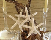 Beach Decor Starfish Ornaments with Natural Twine, set of 3