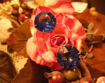 Stunning Blue Glass Screw Back Earrings