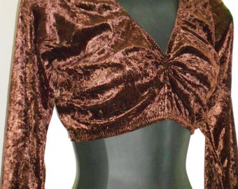 Tribal Egyptian Bellydance Brown Panne Choli- Size Large