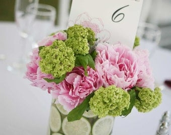 Peony Table Numbers - Set of 15