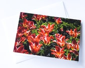 Red Tulips Photo Greeting Card Blank - Nature Photo Card - Flower Card - Garden Card - Tulip Festival Photography Card