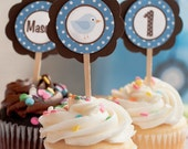 Little Birdie Cupcake Toppers Happy Birthday Party Decorations in Blue and Brown