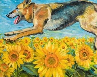 German Shepherd Sunflyer