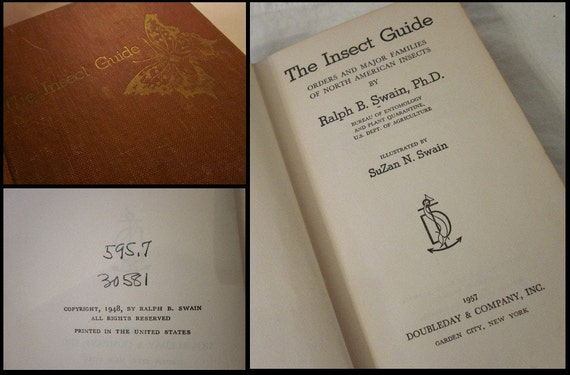vintage 1957 The Insect Guide by Ralph B. Swain Ph.D., HC, Entomology objet d'art prop, shabby rust cloth cover, Gold Gilt Title & Butterfly